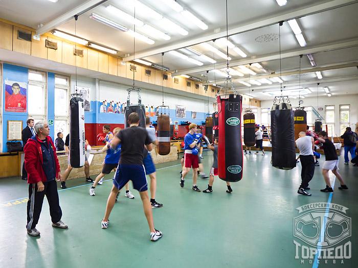 торпедо клуб бокса в москве
